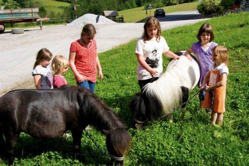 Zwergponys - Natur- & Familienresort Der Stieglerhof, Ihr 3 Sterne Hotel in Radstadt